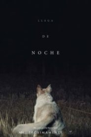 It Comes at Night (Llega de noche)