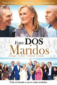 Entre dos maridos (The Wilde Wedding)