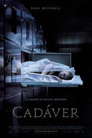 Cadaver (The Possession of Hannah Grace)