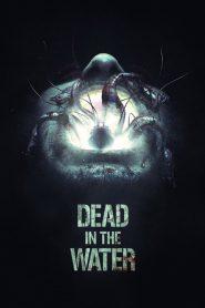 Muerte en el Mar