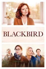 La decisión (Blackbird)